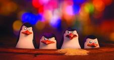 The Penguins of Madagascar - NV