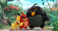 Angry Birds - Ned. Versie